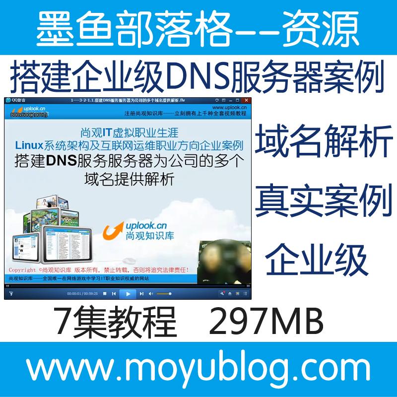 为公司搭建企业级DNS服务器真实案例精讲视频教程