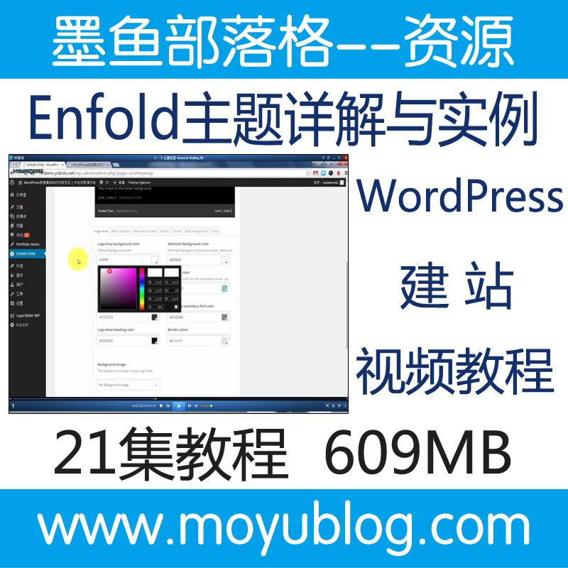 Enfold主题详解与实例视频教程 WordPress建站视频教程