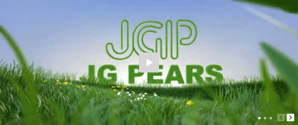 jQuery焦点图片点击jwplayer网页视频播放代码