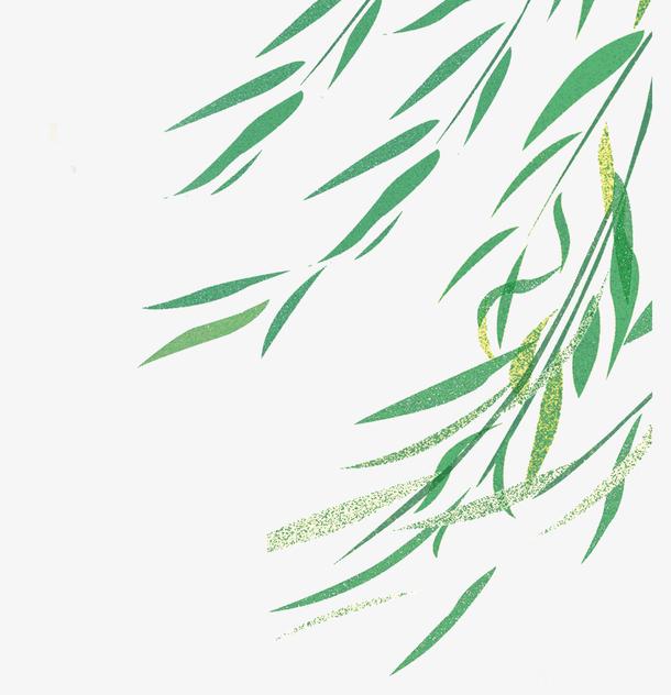 春天春意绿叶