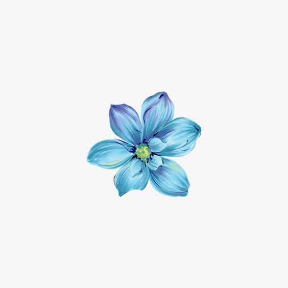 <a href=https://www.moyublog.com/tags/lanse/ target=_blank class=infotextkey>蓝色</a>花朵