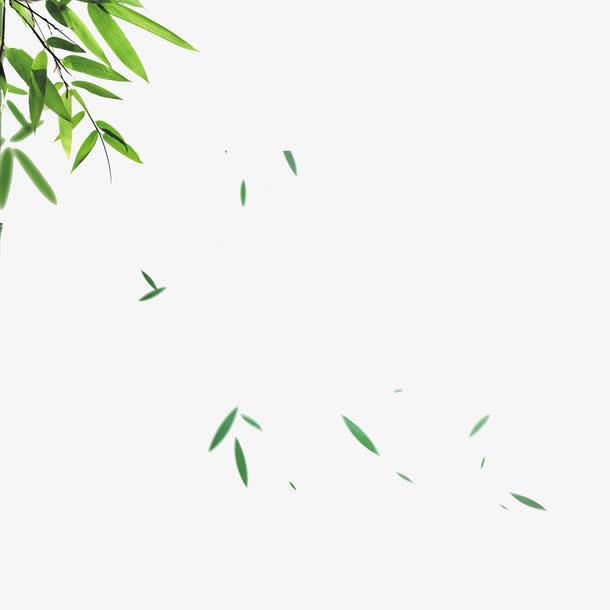 飘落的<a href=https://www.moyublog.com/tags/lvse/ target=_blank class=infotextkey>绿色</a>竹叶素材