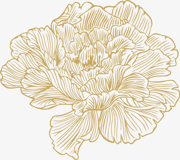 <a href=https://www.moyublog.com/tags/xiantiao/ target=_blank class=infotextkey>线条</a>牡丹花朵