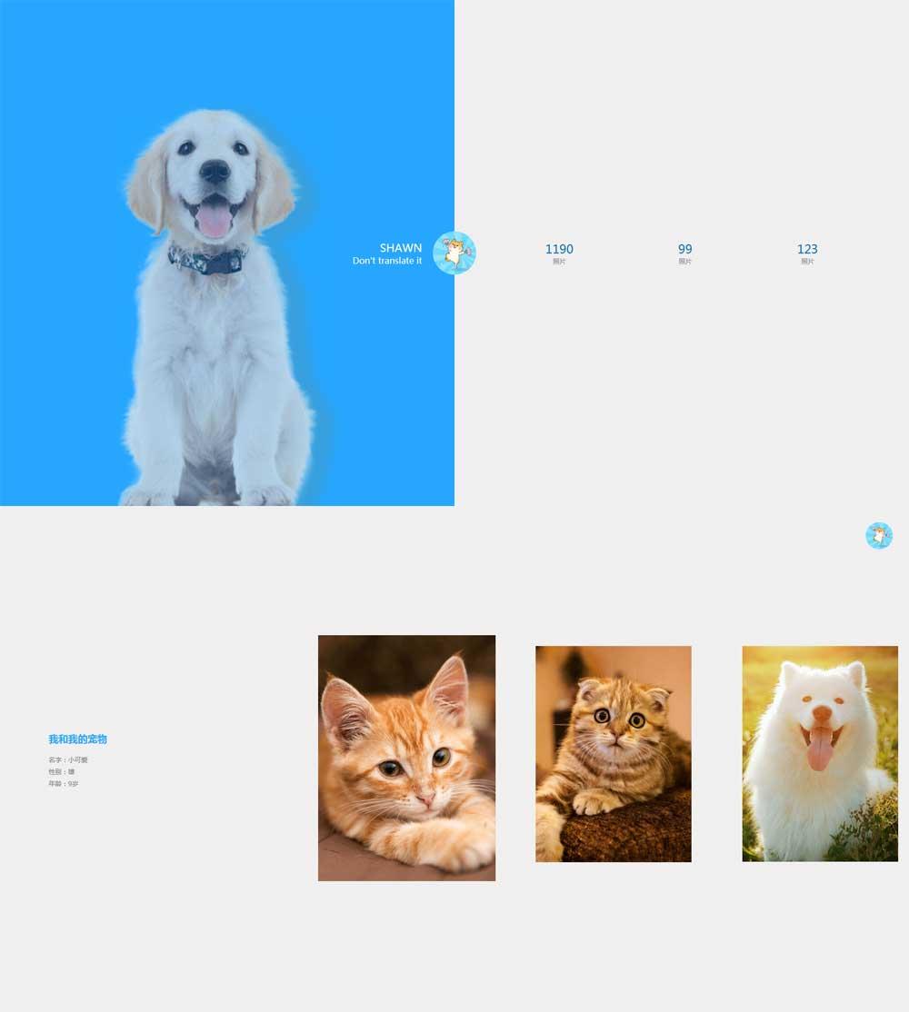 简洁的宠物相册动画切换特效