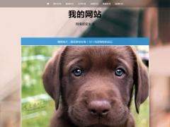 资讯新闻个人网站博客日记帝国CMS模板整站源码自适应HTML5响应式