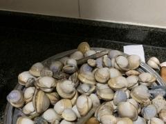 (随拍)海鲜季,买的蟹,抓的蛤!